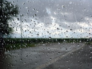 Astuce ! Les stars rentrent  chez elles et attendent que l'averse s'arrête en regardant par une fenêtre