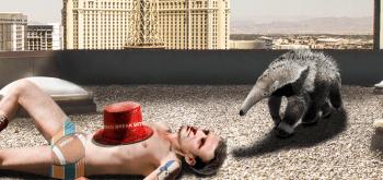 Macron Las Vegas