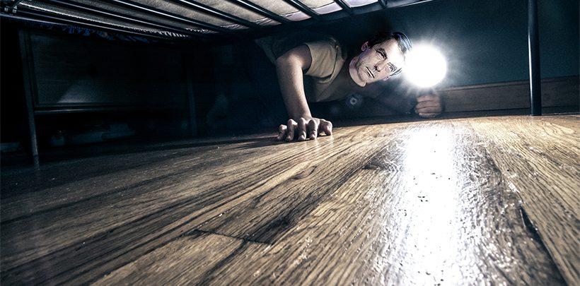 fran ois fillon regarde si fran ois hollande ne se cache pas sous son lit avant d 39 aller dormir. Black Bedroom Furniture Sets. Home Design Ideas